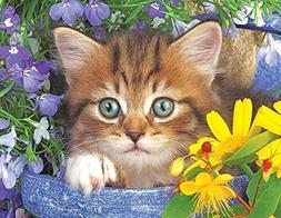 Springbok Alzheimer & Dementia Jigsaw Puzzles - Garden Helpe