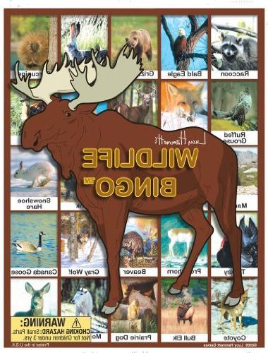 wildlife bingo board