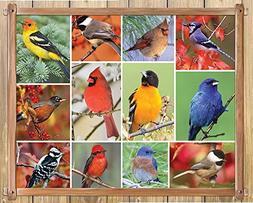Springbok Alzheimer & Dementia Jigsaw Puzzles - Songbirds -